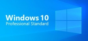 Licencia de Windows 10 Professional